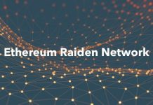 Raiden network RDN
